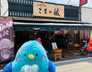 gomanokura1